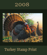 2008 Turkey Stamp Print