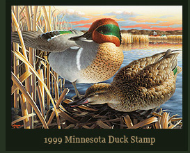 1999 Minnesota Duck Stamp